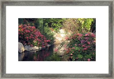 Framed Print featuring the photograph Flowers Over Pond by Amanda Eberly-Kudamik