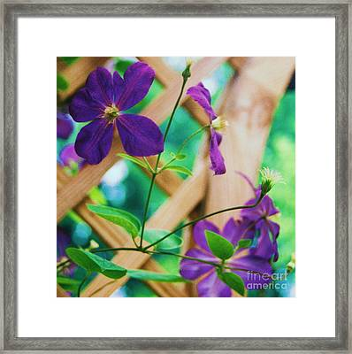 Framed Print featuring the painting Flowers Purple by Eric  Schiabor