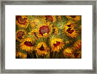 Flowers - Sunflowers - You're My Only Sunshine Framed Print by Mike Savad