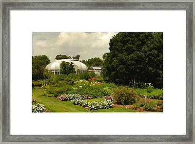 Flowers Under The Clouds Framed Print