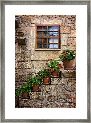 Flowery Decorations Framed Print by Carlos Caetano