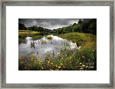 Flowery Lake Framed Print