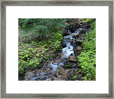 Framed Print featuring the photograph Flowing Creek by Ben Upham III
