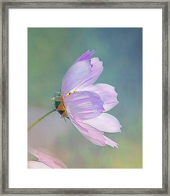 Framed Print featuring the photograph Flowing In The Wind by Elaine Manley
