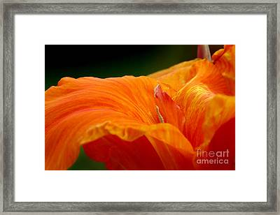 Flowing Framed Print by Jeannie Burleson