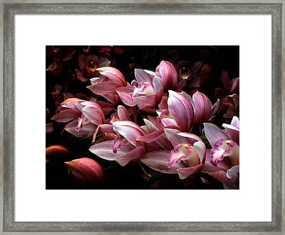 Framed Print featuring the photograph Flowing Orchids by John Rivera