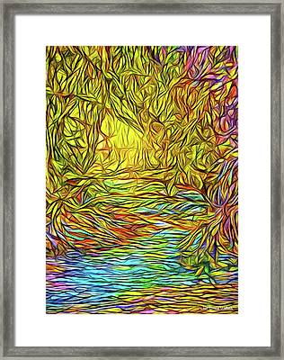 Flowing River Vision Framed Print