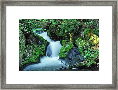 Flowing Softly Framed Print by Bill Morgenstern