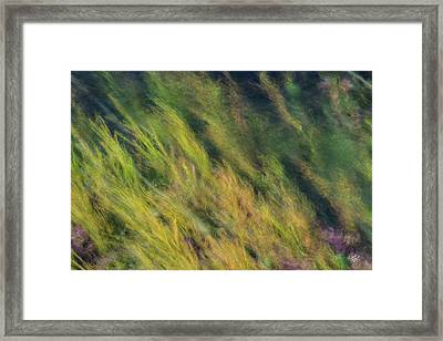 Flowing Textures Framed Print by Leland D Howard
