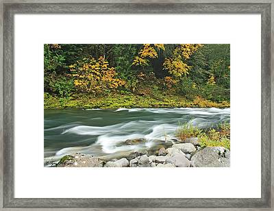 Flowing Umpqua River Framed Print by Tyra  OBryant
