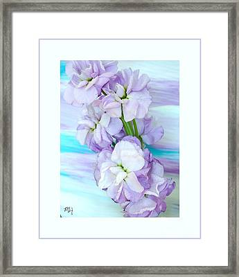 Framed Print featuring the mixed media Fluffy Flowers by Marsha Heiken