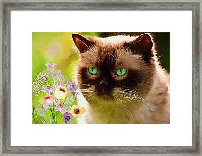 Fluffy Kitty - Painted Framed Print by Ericamaxine Price