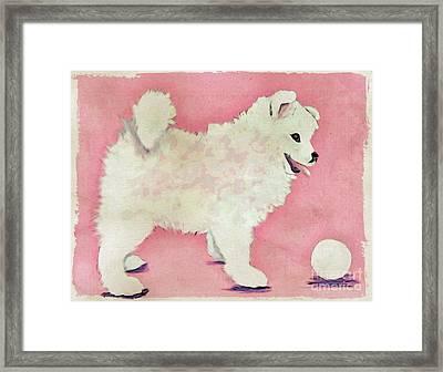 Fluffy Pup Framed Print