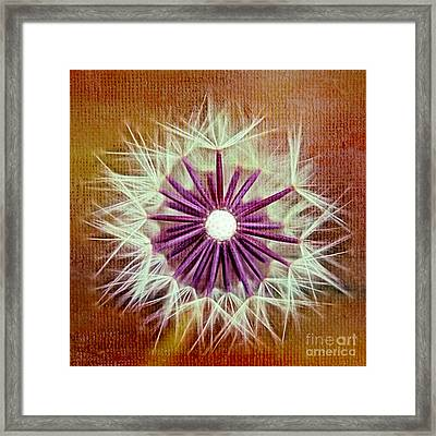 Fluffy Sun - S20b-t01sq Framed Print by Variance Collections