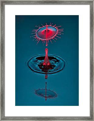 Fluid Parasol Framed Print by Susan Candelario