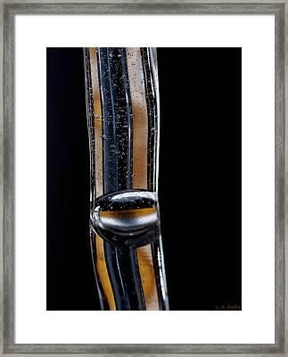 Fluidity Iv Framed Print