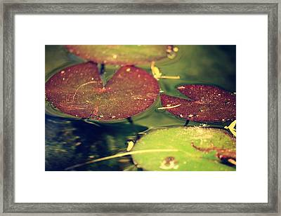 Fluidity Of Time Framed Print by Lisa S Baker