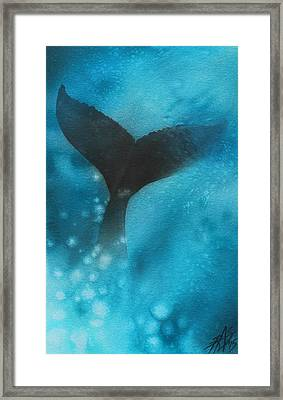 Fluke Framed Print by Robin Street-Morris