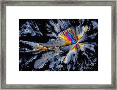 Fluoxetine Hydrochloride, Polarized Lm Framed Print by Antonio Romero