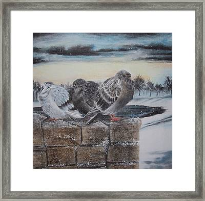 Flurries Framed Print by Kathleen Romana