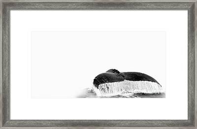 Flute Framed Print