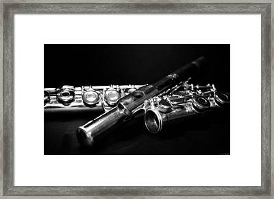 Flute Series I Framed Print