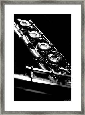 Flute Series IIi Framed Print