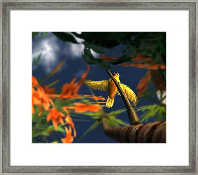 Flutter Framed Print by Monroe Snook