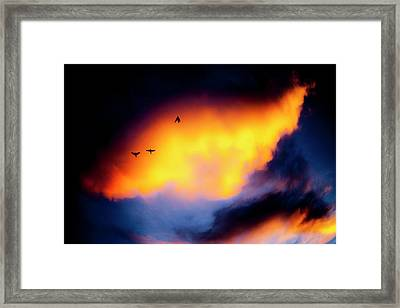 Framed Print featuring the photograph Fly Away by Eric Christopher Jackson