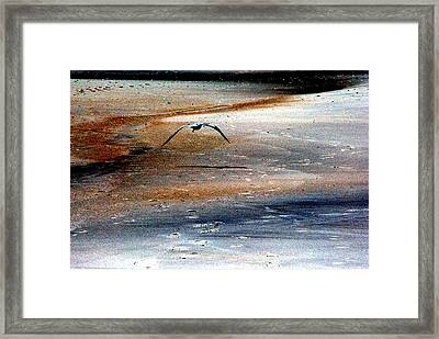 Fly Away Framed Print by Robert Scauzillo