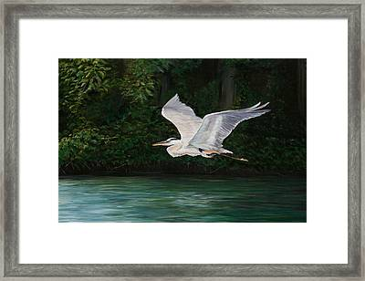 Fly By Framed Print