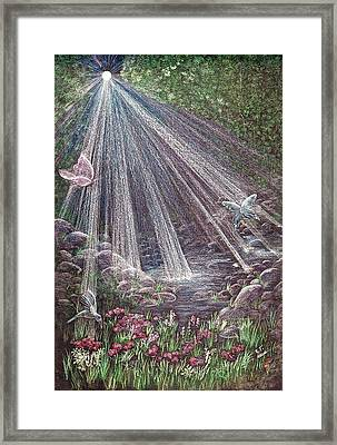 Fly By Light  Framed Print by Tammie Temple