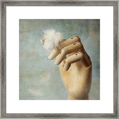 Fly Far Away Framed Print by Amy Weiss