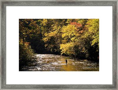 Framed Print featuring the photograph Fly Fisherman On The Tellico - D010008 by Daniel Dempster