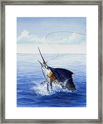 Fly Fishing For Sailfish Framed Print by Charles Harden