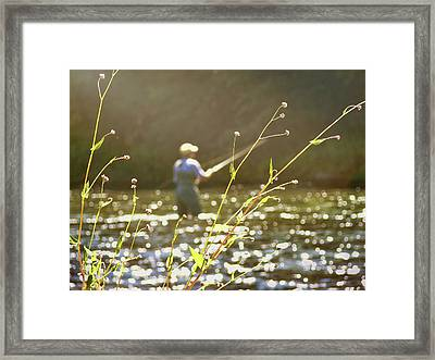 Fly Fishing Framed Print by JAMART Photography