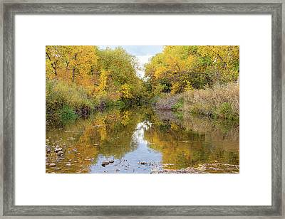 Fly Fishing Stream Reflections Framed Print by James BO Insogna