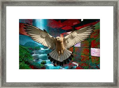 Fly From Here Framed Print