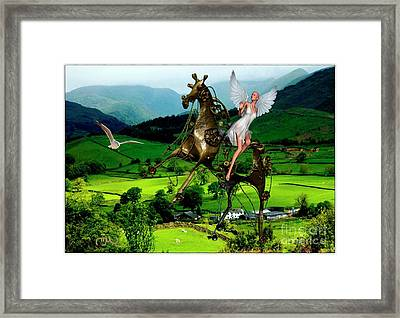 Fly In The Mountains Framed Print