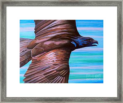 Fly Like An Eagle Framed Print by Brian  Commerford