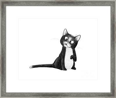 Fly On Cat Framed Print
