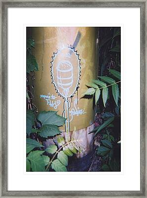 Fly Framed Print by Richard N Watkins
