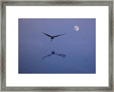 Fly To The Moon Framed Print by Eric Workman