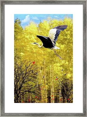 Flying Against The Wind Framed Print