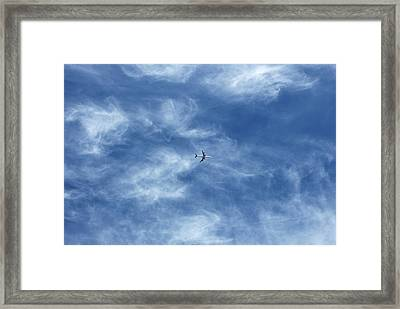 Flying Away Framed Print by Richard Newstead