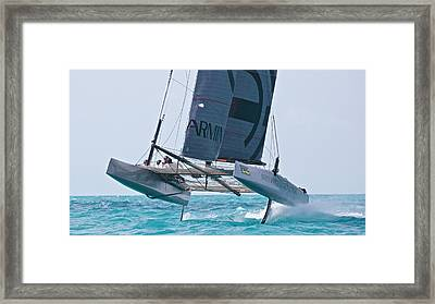 Flying Cat Framed Print