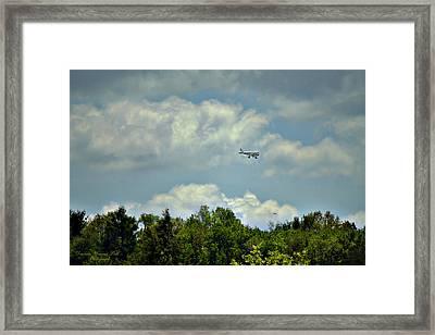 Flying Framed Print by Darlene Bell