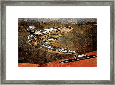 Flying Erol Framed Print by Greg Sharpe