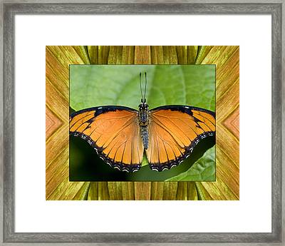 Framed Print featuring the photograph Flying Flame by Bell And Todd