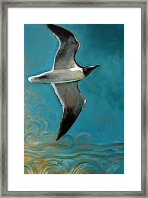Flying Free Framed Print by Suzanne McKee